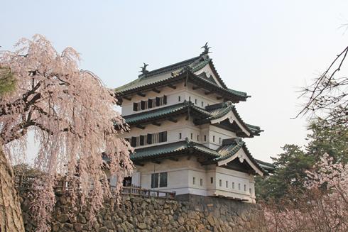 弘前桜祭り2014(1)-9