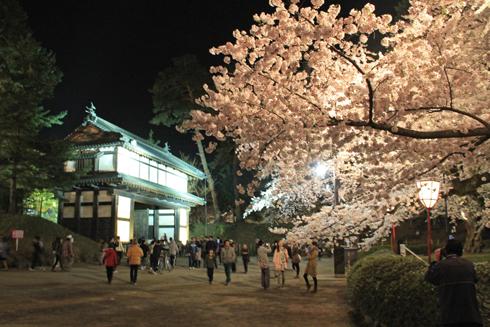 弘前夜桜2014-9