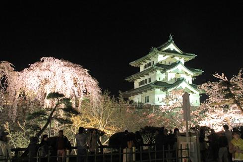 弘前夜桜2014-11