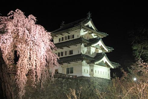 弘前夜桜2014-12