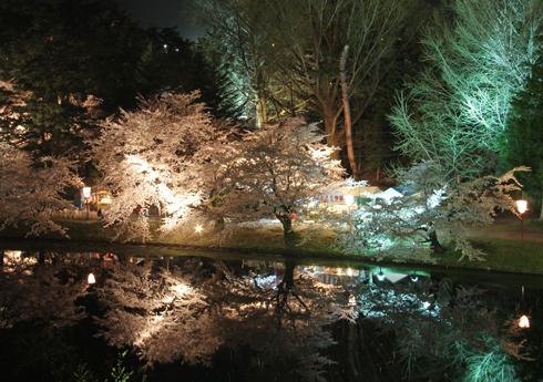 弘前夜桜2014-15
