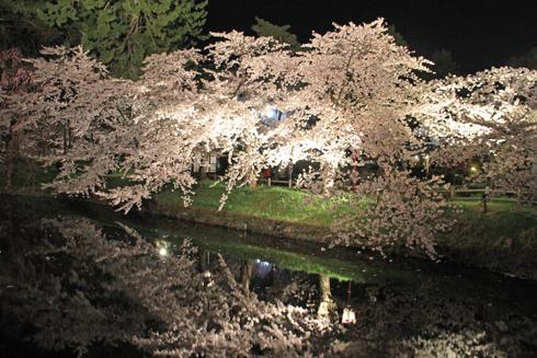 弘前夜桜2014-16