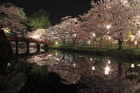 弘前夜桜2014-17