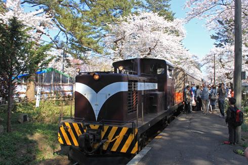 芦野公園桜祭り2014-13