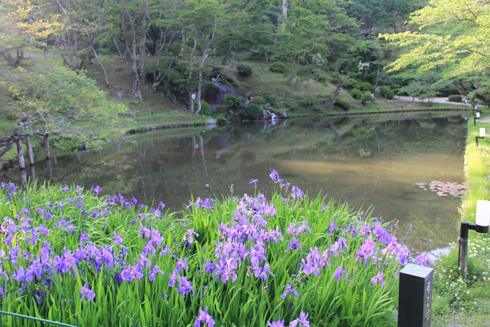 2014二本松城-8