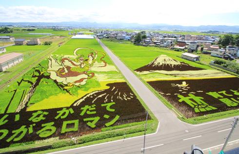 田舎館田んぼアート2014-6