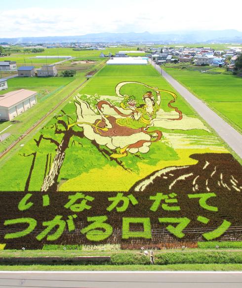 田舎館田んぼアート2014-9