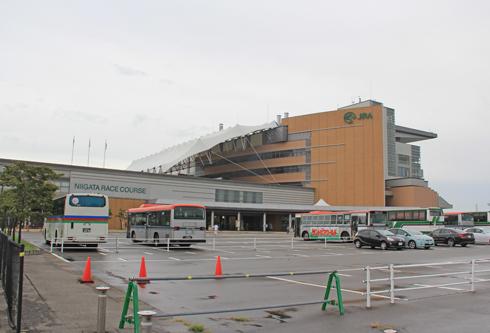 新潟競馬2014-1