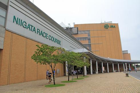 新潟競馬2014-2