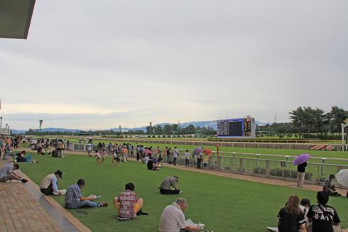 新潟競馬2014-8