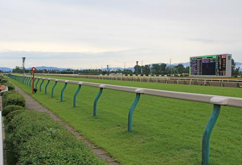 新潟競馬2014-9