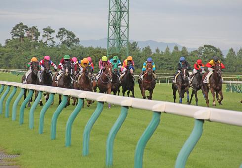 新潟競馬2014-18