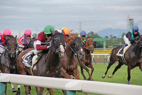 新潟競馬2014-19