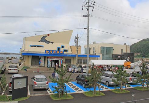 クラゲ水族館-2