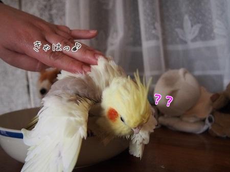 (やった♪)