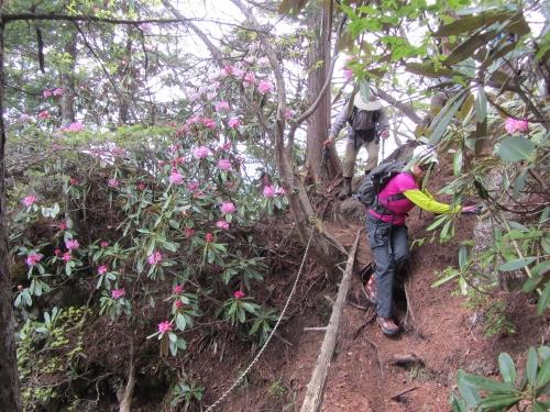 鍬の峰登山1