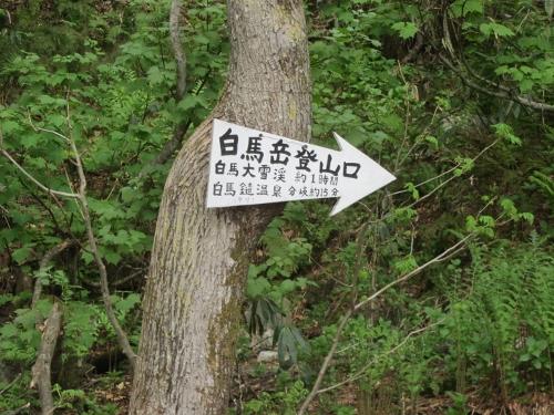 6_3猿倉バイクラン2
