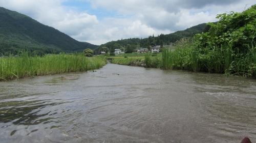 8木崎北端・中綱湖からの流れ込み (500x281)