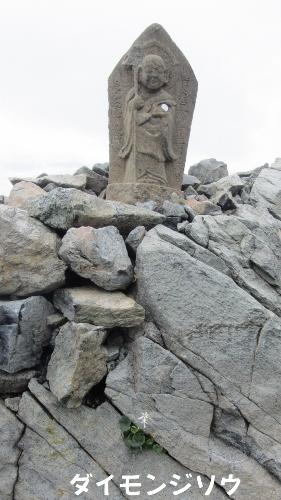 八方池上のミヤマダイモンジソウと石像 (281x500)