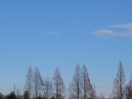 2014_03030004.jpg