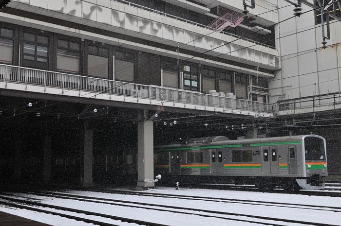 DSC_3755.jpg