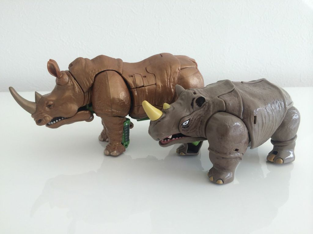 Rhinox17.jpg