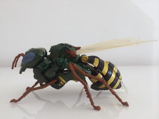 Wasp4.jpg