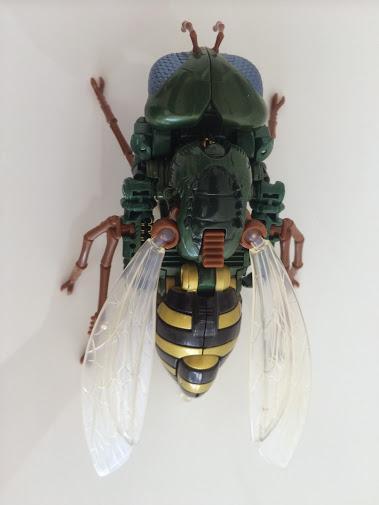 Wasp5.jpg