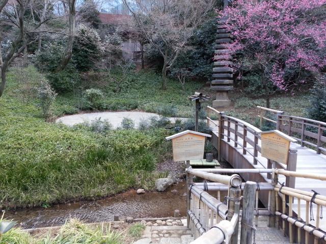 椿山荘 (18)