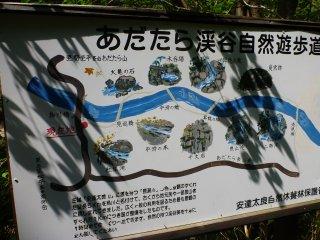 s自然遊歩道1