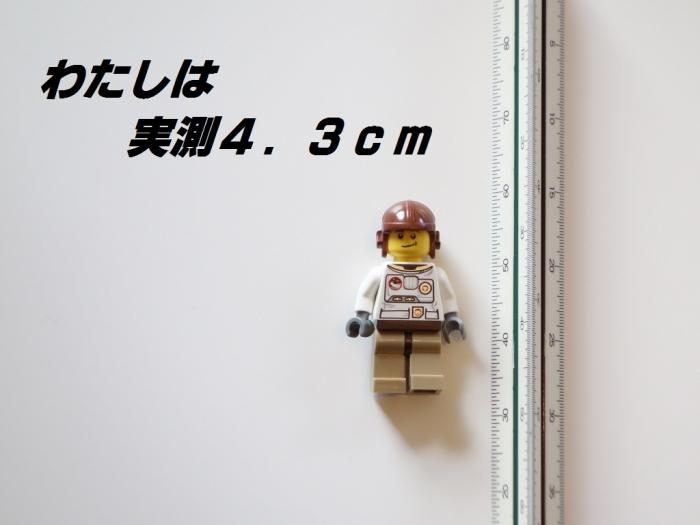 03DSC02768 (1)1
