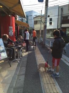 201405011ルーシーちゃん