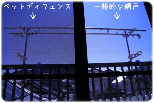 2014072101.jpg