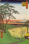 名所江戸百景084