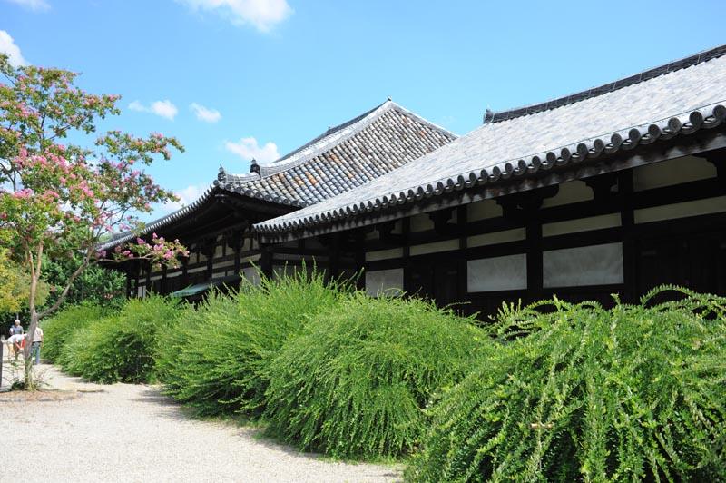 re元興寺