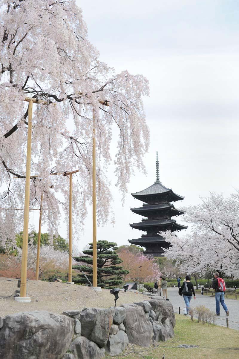 re東寺のコピー