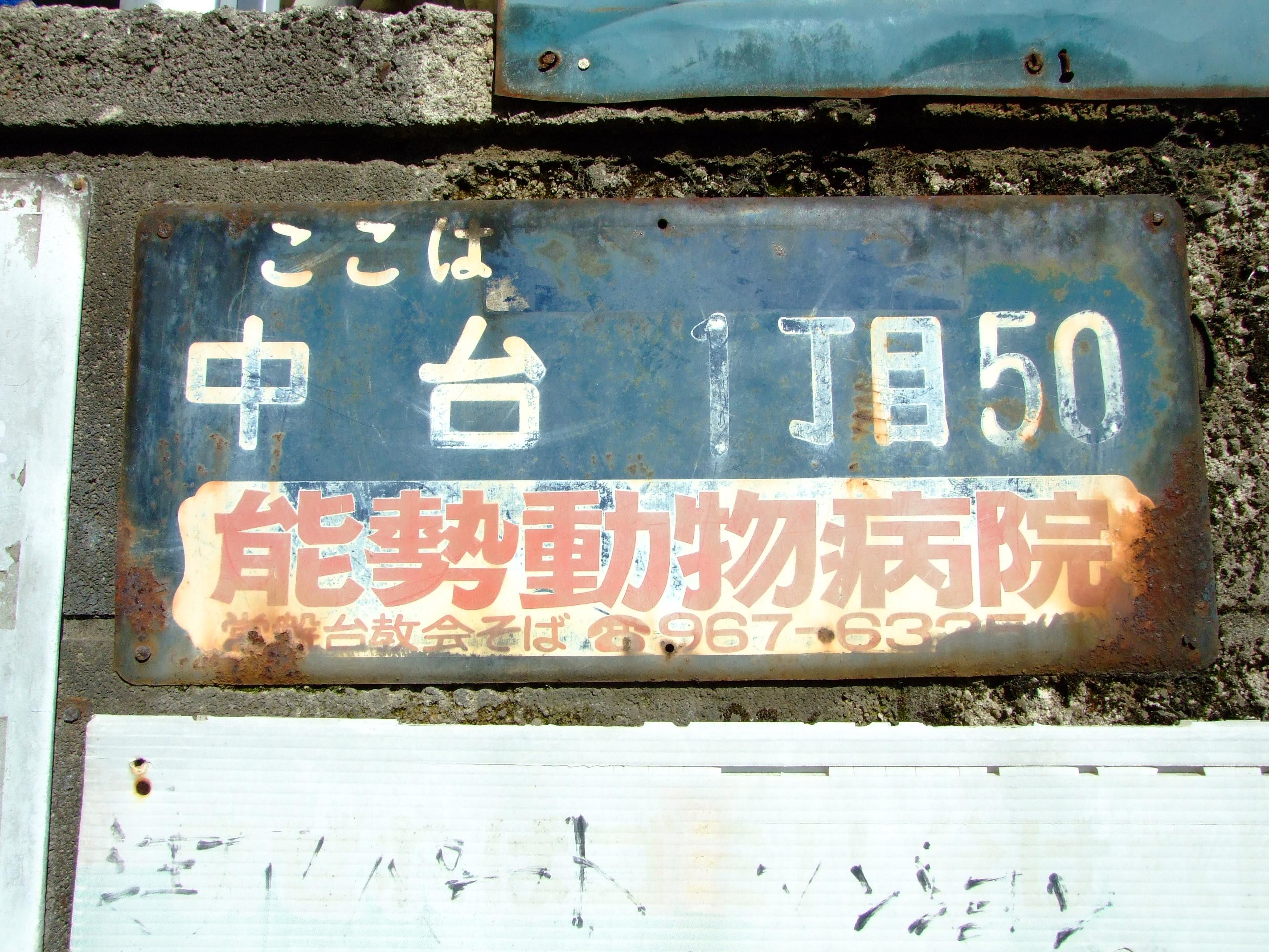 183.jpg