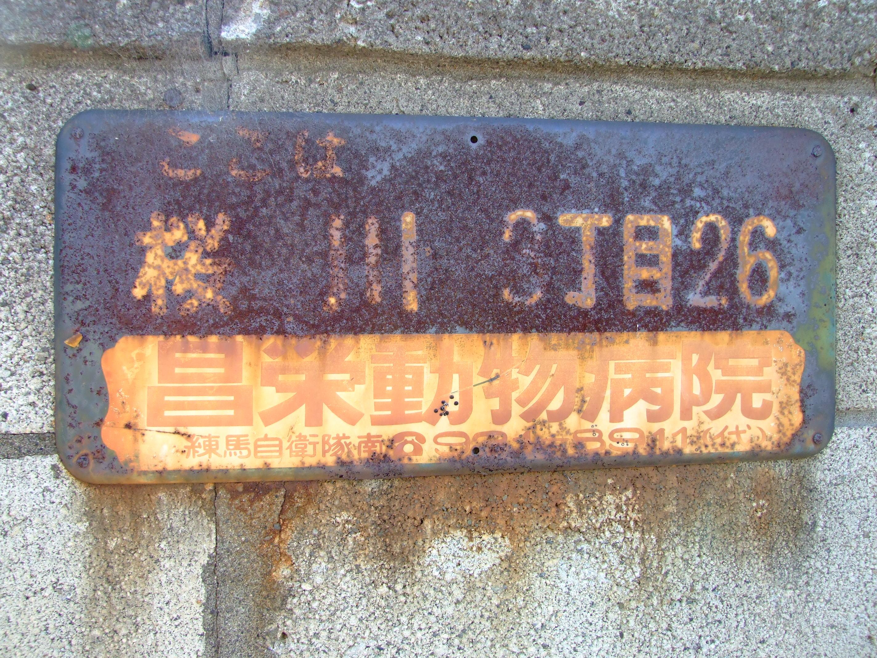 197.jpg