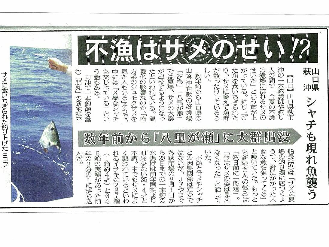 2013新聞