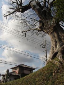 野村一里塚