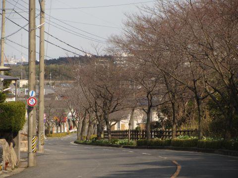 和田の坂道