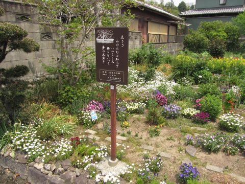 石薬師宿上野町にて