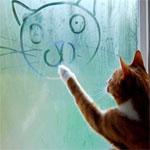 落書きする猫