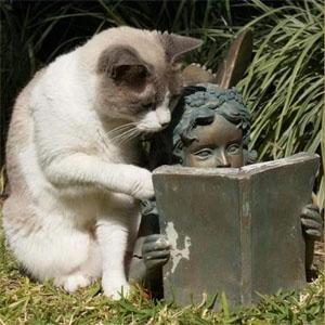 書き方を教える猫