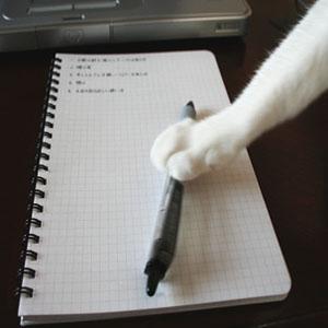 字を書く犬