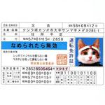 なめ猫の免許証