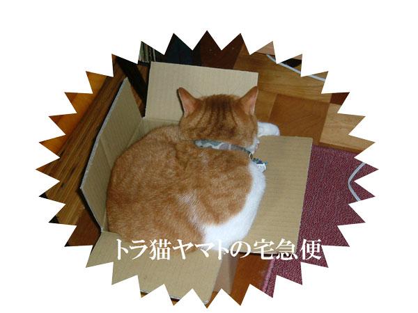 DSCF0001_20140613234505586.jpg