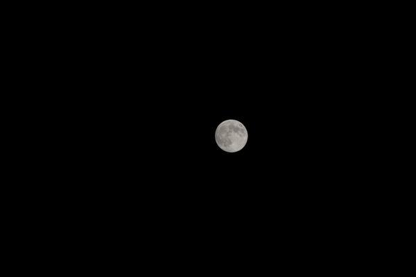 サイズ変更140908_中秋の名月