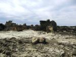ゴジラ岩周辺