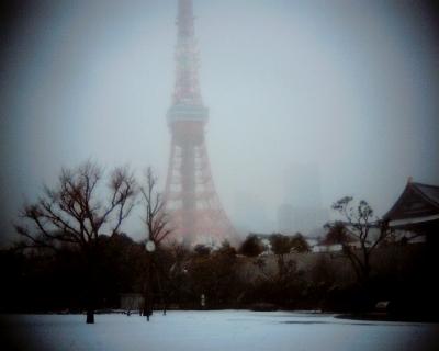 大雪の中の東京タワー:Entry
